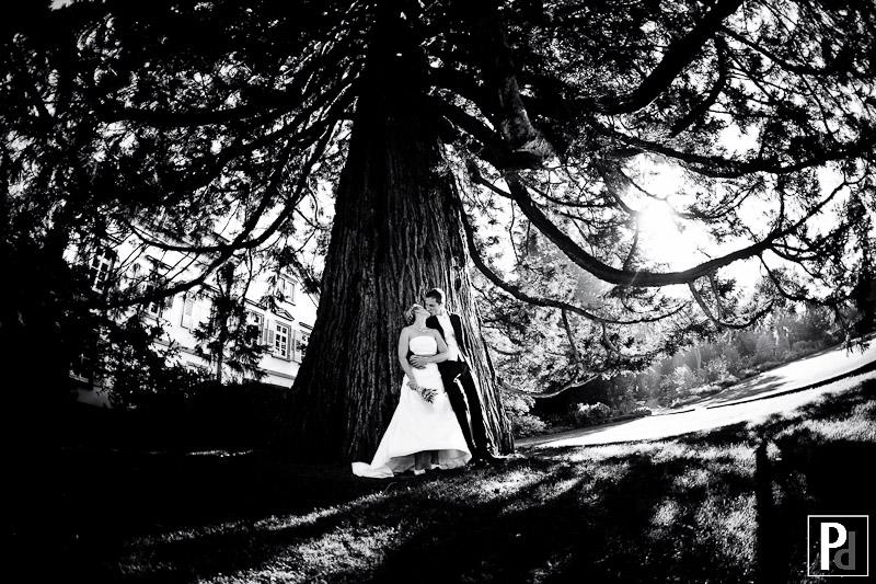 Hochzeitsfotos Weinheim Schlosspark