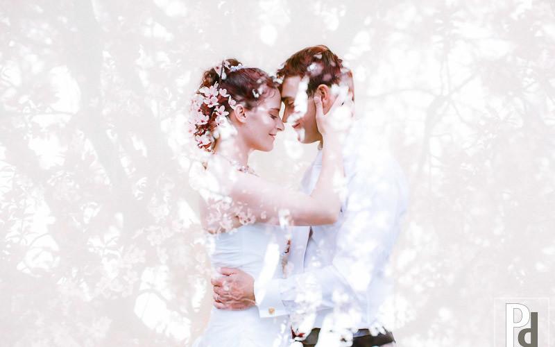 Hochzeitsfotograf Neckargemünd