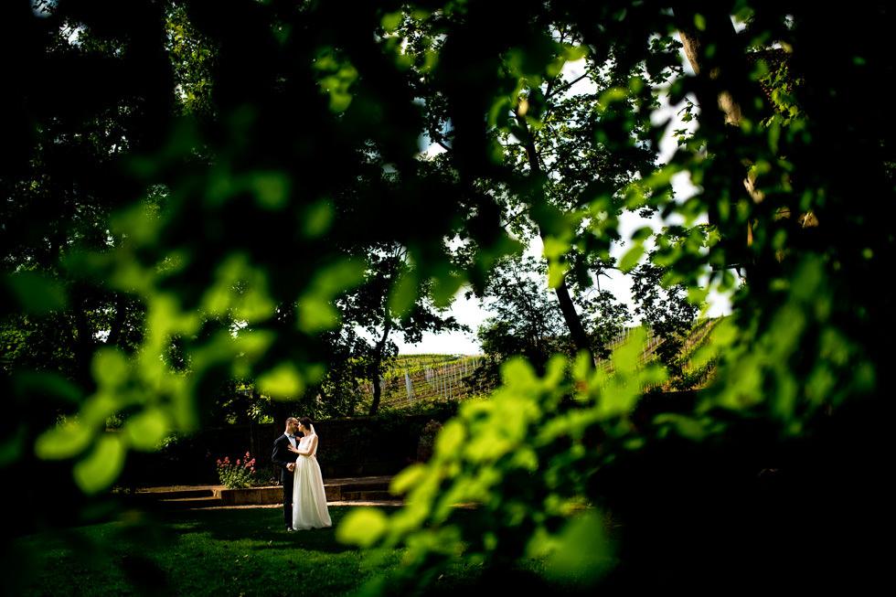 Hochzeit-Weingut-von-Winning-37