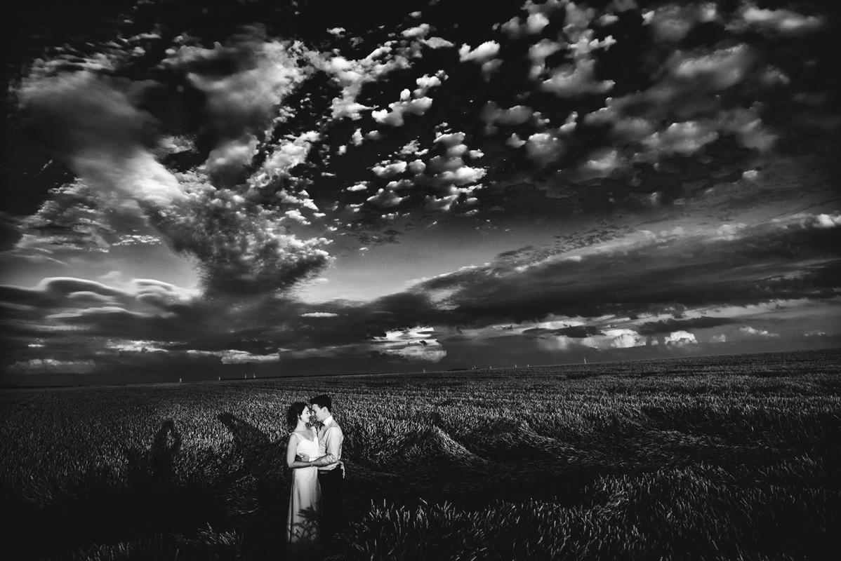 Hochzeitsbilder im Weizenfeld