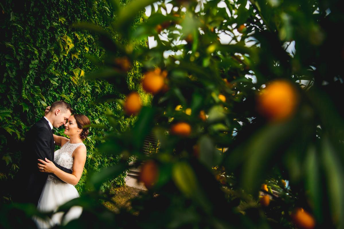 Hochzeitsfotograf Neues Schloss Meersburg
