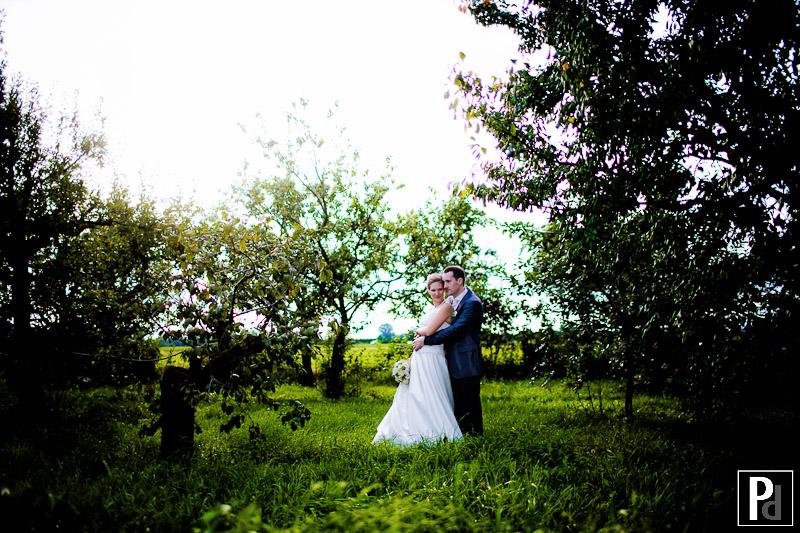 Hochzeit Weingut Schröder Weinheim