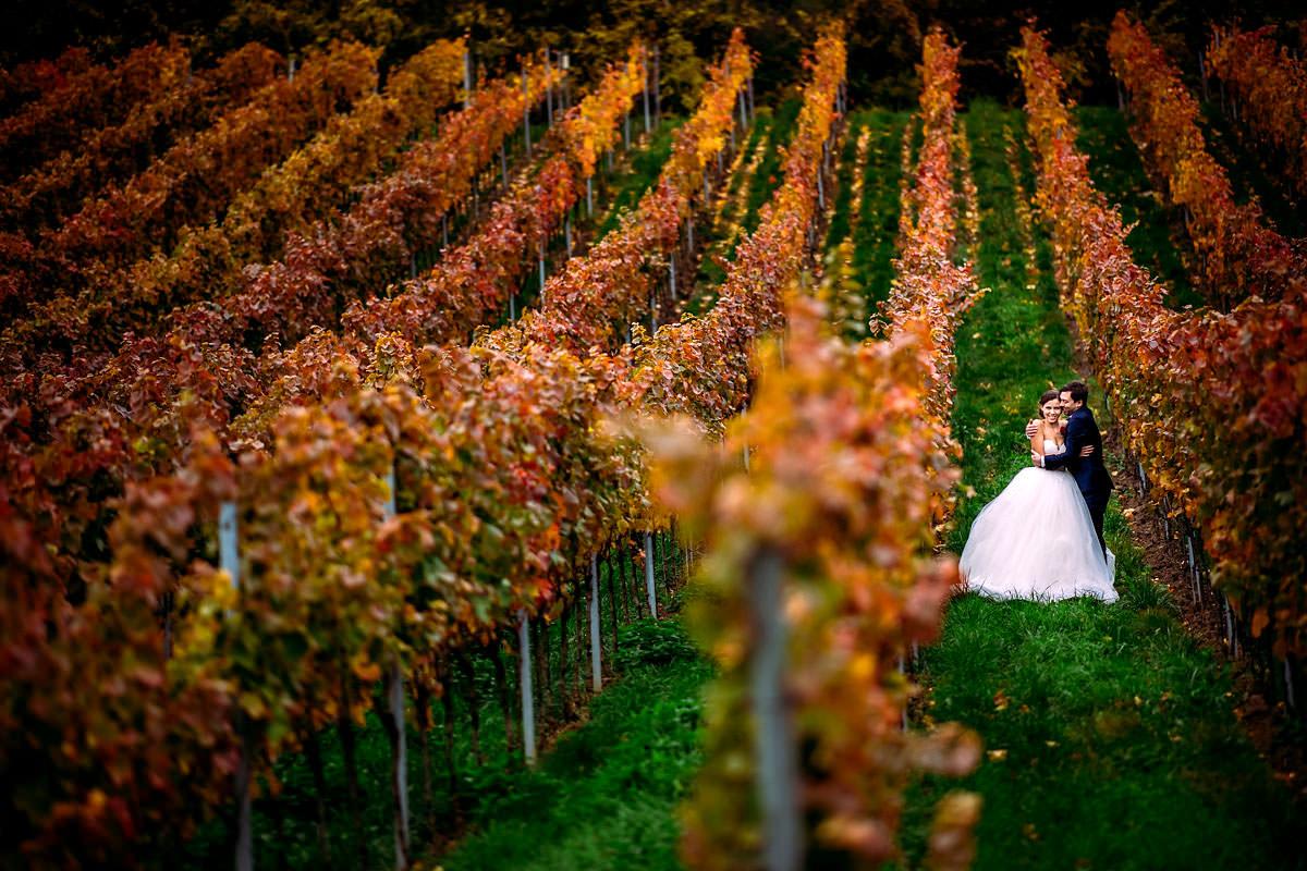 Hochzeit Altes Weingut am Maxbrunnen