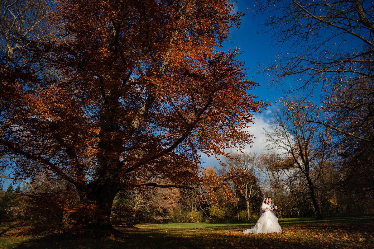 Hochzeitsbilder Rosenhöhe Darmstadt